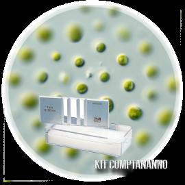 Kit ComptaNanno - Comptage cellulaire Nannochloropsis
