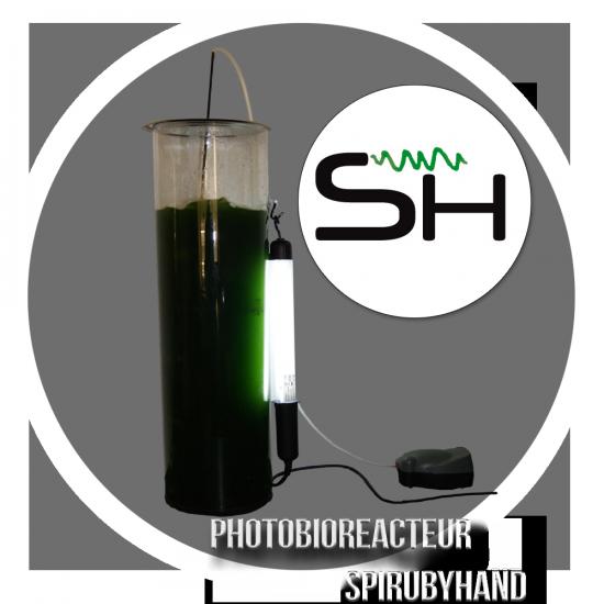 Photobioréacteur SpiruByHand