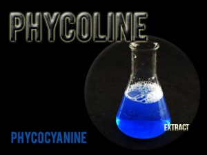 Phycoline Phycocyanin extract