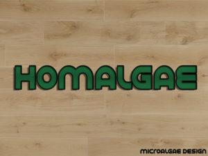 Homalgae